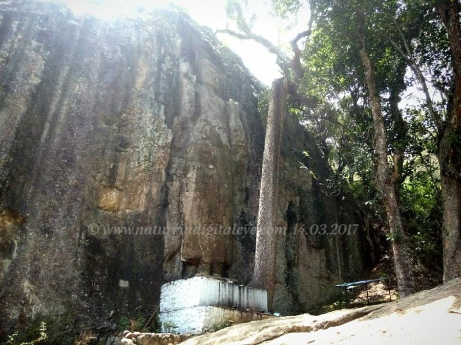 IMG_20170331_182547_Dowa Temple NIDE